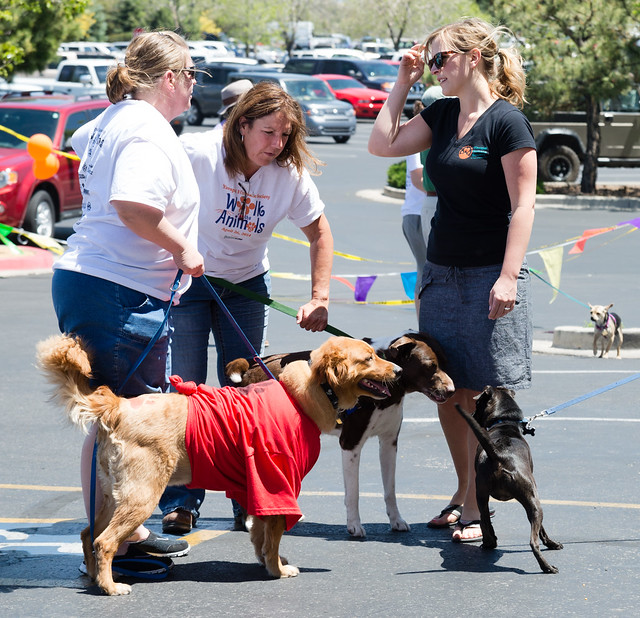 walk_for_the_animals-20140504-140