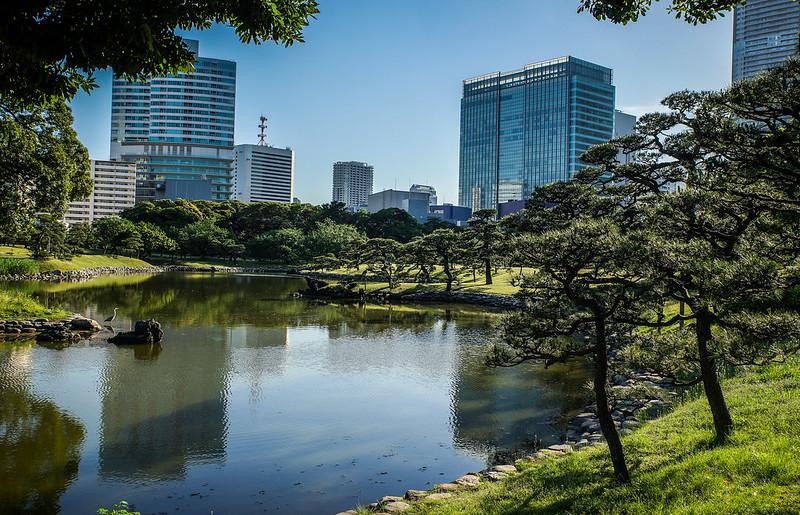 Hama-rikyu garden view