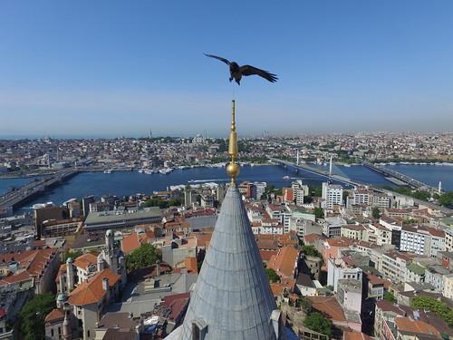 Isztambul látkép valóban madártávból