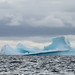Antarctica_CiervaCove_05678_2015-December-26_165633_HeidiPodjavorsek.jpg