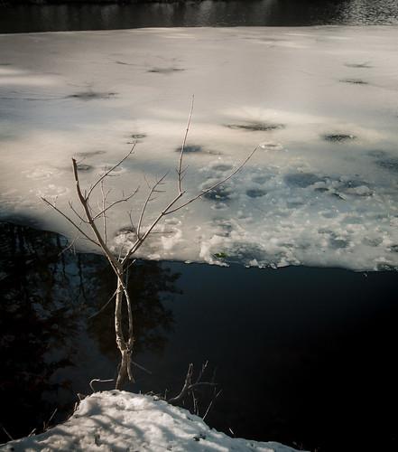 ny newyork landscapes stateparks clarencefahnestockstatepark