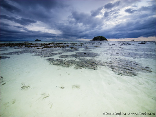 stone sand coralreef bankolipesatunthailandkohlipesunrisemorningseaoceanebb