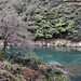 Arashiyama 嵐山 - 41