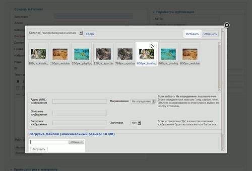 Интерфейс загрузки и вставки изображений