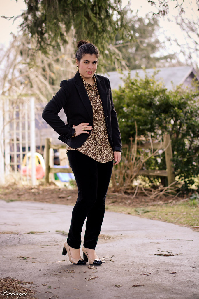 put on the leopard and stop worrying-1.jpg