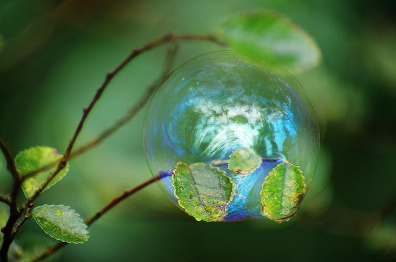 只緣身在泡泡中