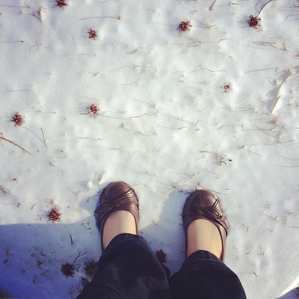It snowed just a little last night!