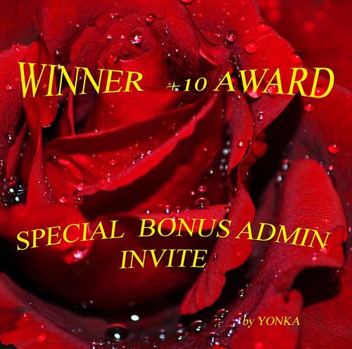 Winner Special Bonus ADMIN Award