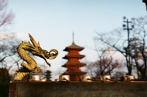 2012-0126-pentax-sl-fuji-xtra400-021