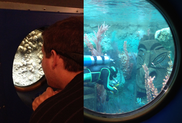 Disneyland: Nemo
