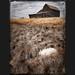 Earthly Secrets by PrairieEyes