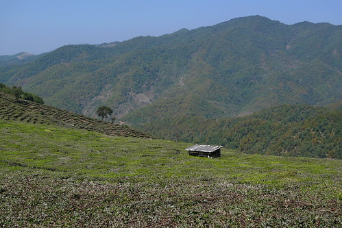 Tea Horse Trail - Mohei, Yunnan, China
