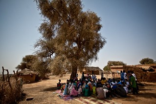 Diaout community discusses drought in Mauritania