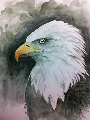 Bald Eagle Complete.  140mins.