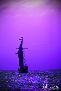 purple sea