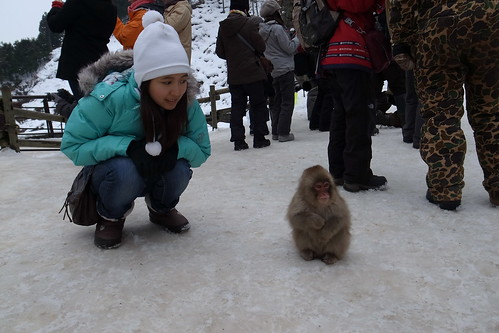 Imitating a monkey