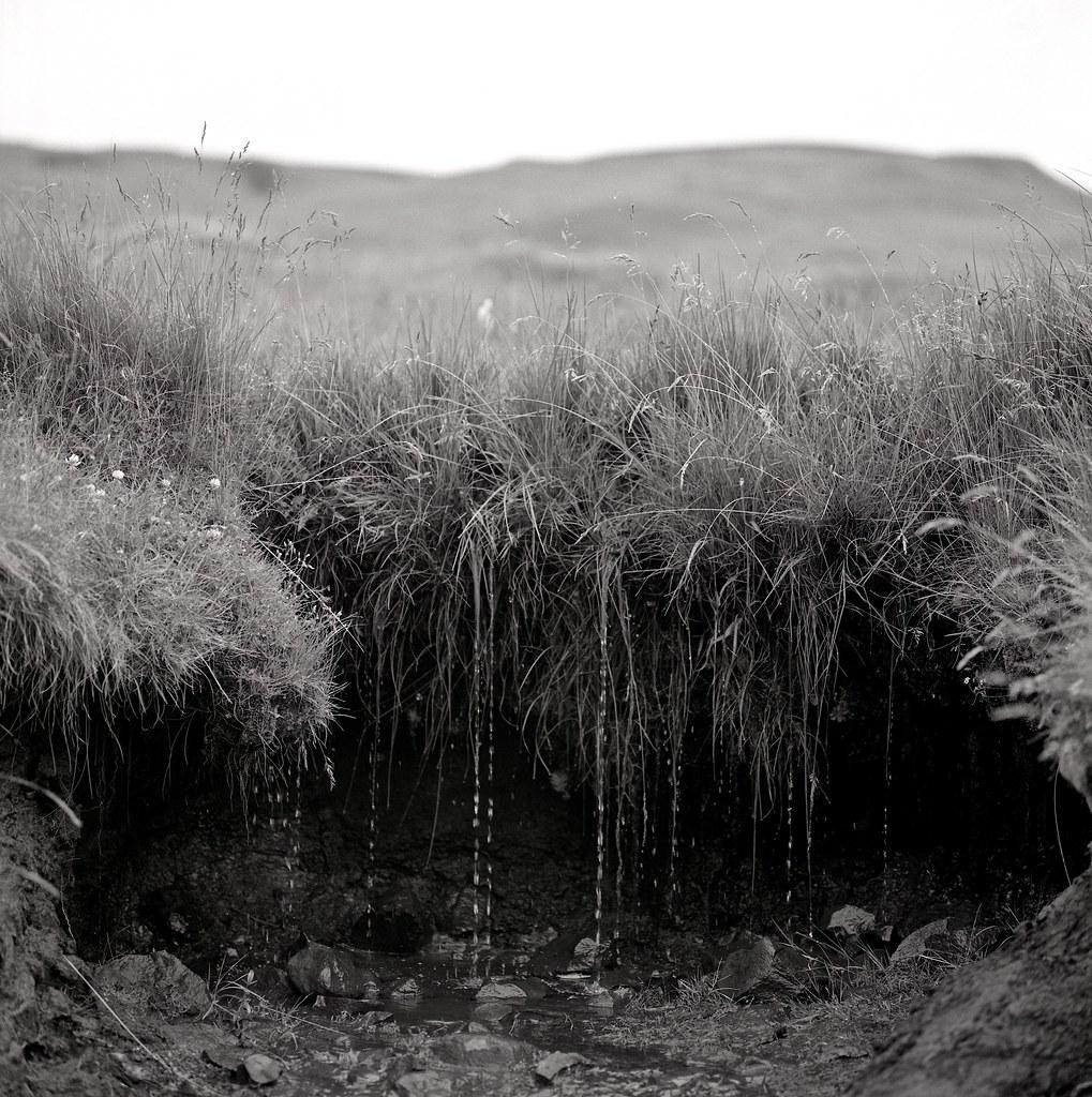 "Image titled ""Dripping, Skógar, Iceland."""