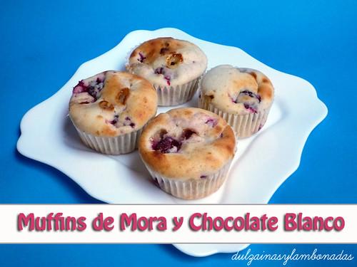 Muffins de Mora y Chocolate Blanco