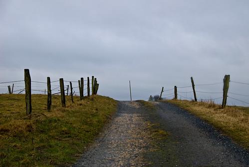 Petit chemin à travers champs