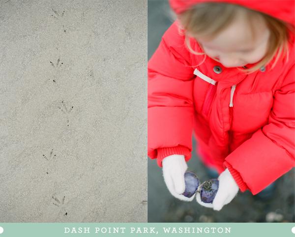 2012_0219_DashPoint01.jpg
