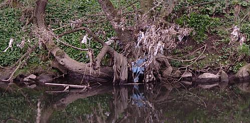 Plastic bag trees