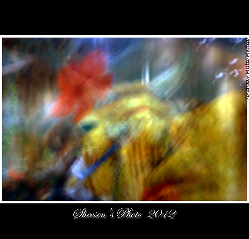 canoneos350d sigma1224mmf4556exdghsm 手動曝光 國立台灣文學館 生命在文學中流動 看不清楚 藝術和文學 文學的光影 創作的能量 百年人文傳承大展 20120411 只有創作者懂 我的藝術