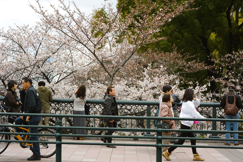 Osaka - Sakuranomiya