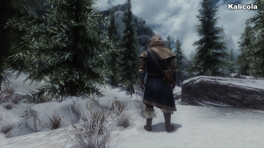 Skyrim cartoon enb