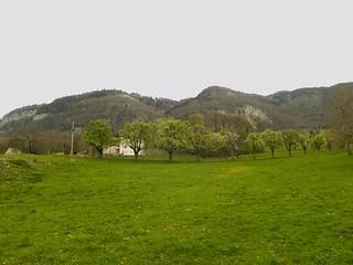 Chartreuse du Pomier sous le Salève