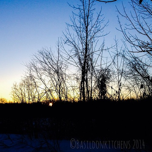 17/3/2014 - today's weather {looks likes it's going to be a sunny day} It was a beautiful day after all; even though it was still quite cold! #fmsphotoaday #weather #sunrise #princeedwardcounty #sunshine #millerroad