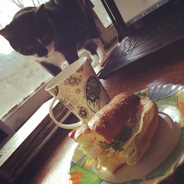 И снова #понедельник. #кофе #завтрак #утро #monday #mondaymorning #breakfast #mondaybreakfast #tabithathebeast #coffee #thatlook