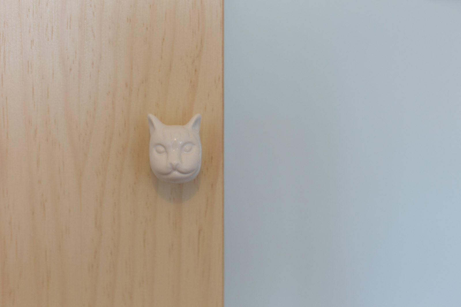 Cat door knobs