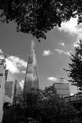 Changing City Skyline