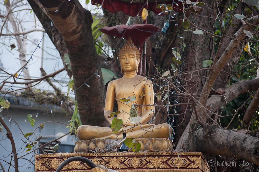 Buddha statue in Luang Prabang Laos
