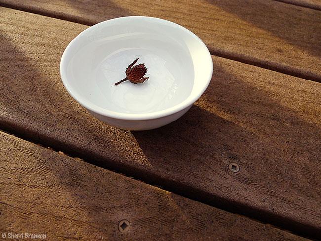 white bowl 4