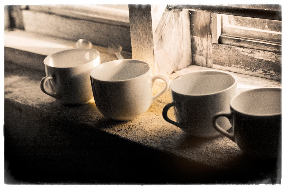 cups-1-of-1-1.jpg