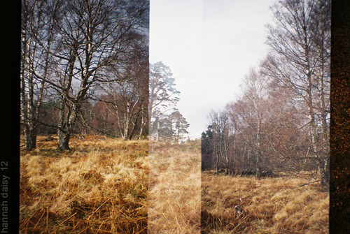 Cairngorm, Scotland, March 2012