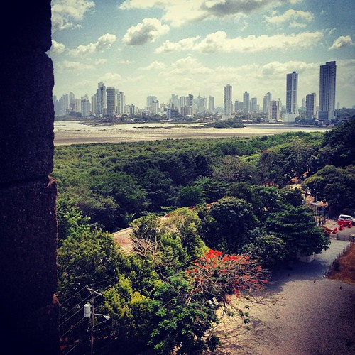 #vista #tower #skyline #ciudaddepanama #panama #centralamerica #vegetation #trees