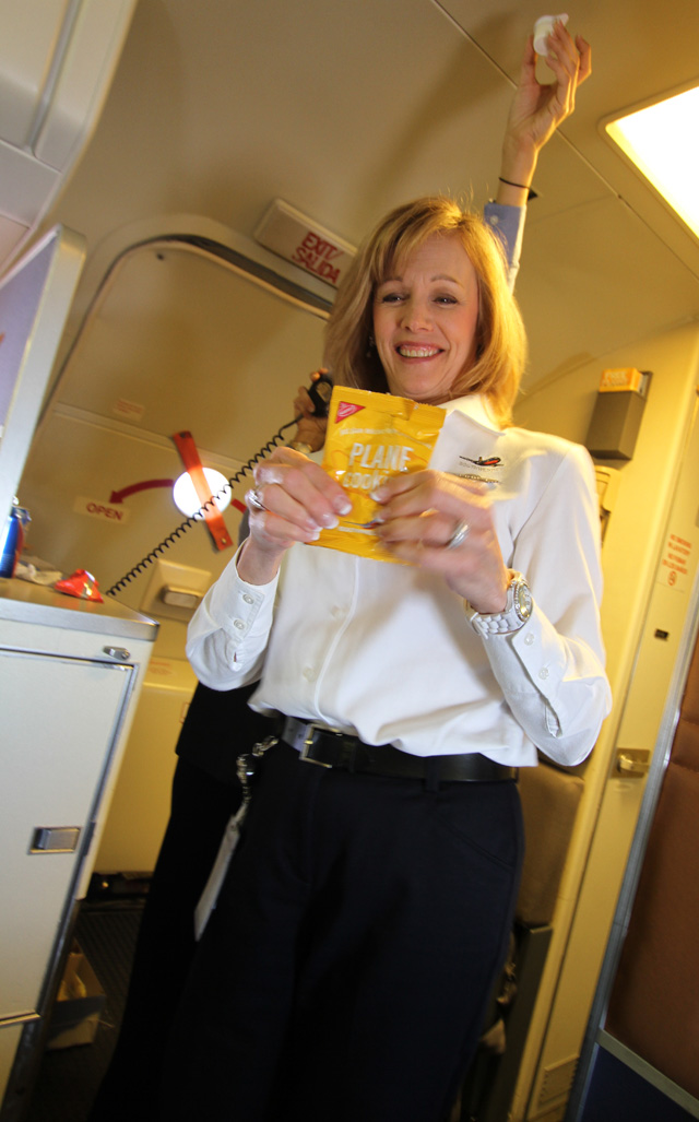 Southwest Airlines Flight 1200 Airplane Food Recipes