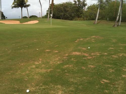 Hawaii Prince Golf Club 380
