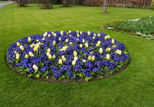 Botanic Gardens - Dublin