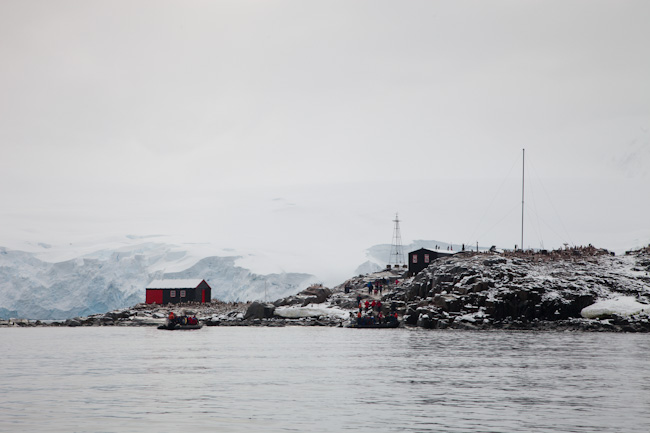 antarctica-blog-75