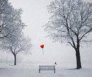 iubire iarna