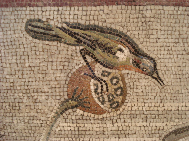mosaics in pompeii Copies of frescoes from pompeii and  in roman frescoes and mosaics pygmies were associated with egypt and were used to portray the native population of.