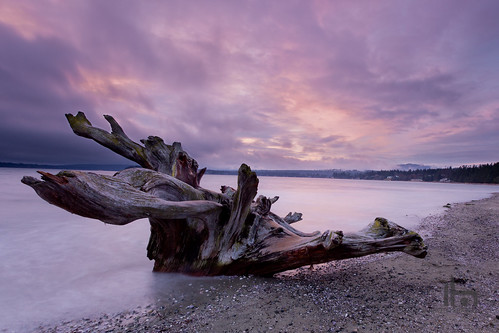 wood pink beach sunrise canon long exposure purple lee hennes 1022 rathtrevor drift