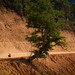 Dusty Ride-  Bicycle Touring in Laos by worldbiking.info
