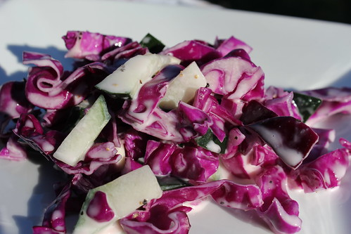 6884267745 6cf9b5b4dc The Best Coleslaw Recipe I Ever Made!