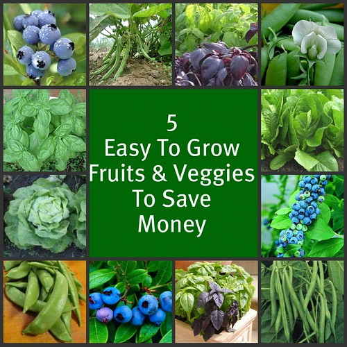 If You're Growing A Vegetable Garden, It's Time To Get