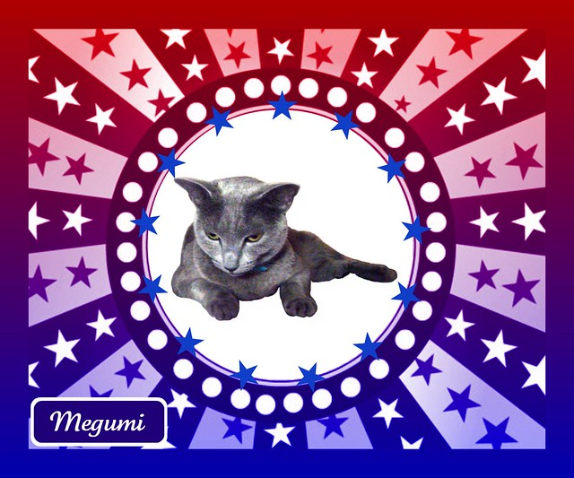 Megumi is being patriotic and celebrates President's Day!