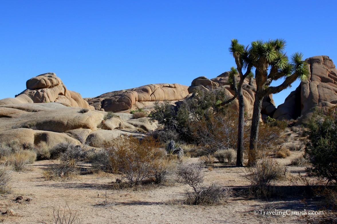 Rock Formations, Joshua Tree NP